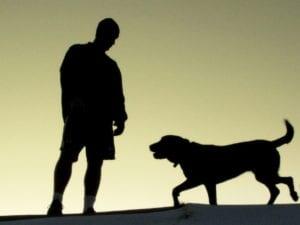 Tener una mascota beneficia tu salud