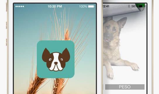 apps para perros alimentacion